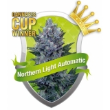 Northern Lights Automatic 10 ks Fem.