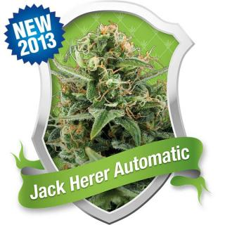 Royal Jack Automatic 3. ks Fem.