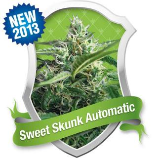 Sweet Skunk Automatic 3 ks Fem.