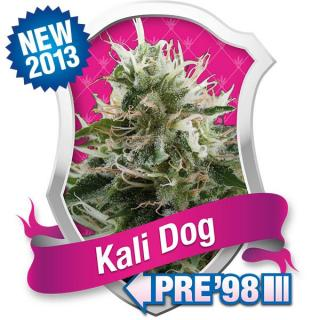 Kali Dog, 3 ks Fem.